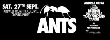 2014-09-27 - ANTS, Ushuaïa Closing Party-1.jpg