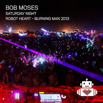 2013-08-31 - Robot Heart, Burning Man.jpg