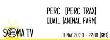 2014-05-09 - Quail, Perc - Soma TV 7.jpg
