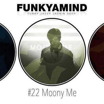 2014-11-06 - Moony Me - FunkYaMind Podcast 022.jpg