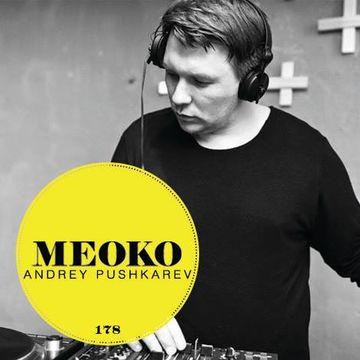 2014-11-11 - Andrey Pushkarev - Meoko Podcast 178.jpg