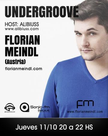 2012-10-11 - Florian Meindl - Undergroove, Sonic FM.jpg