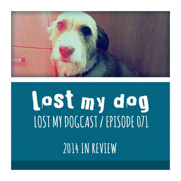 2014-12-01 - Strakes - Lost My Dogcast 071 (2014 In Review).jpg