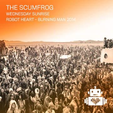 2014-08-25 - Robot Heart, Burning Man -2.jpg