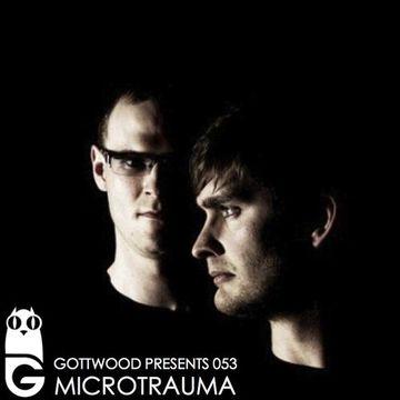 2013-05-29 - Microtrauma - Gottwood 053.jpg