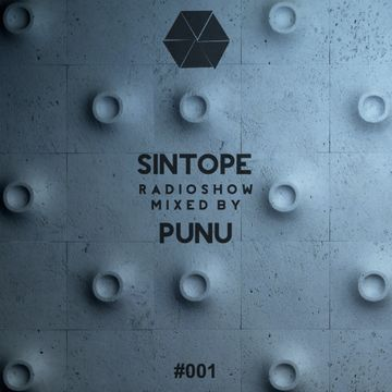 2014-11-24 - Punu - Sintope Radioshow 001.jpg