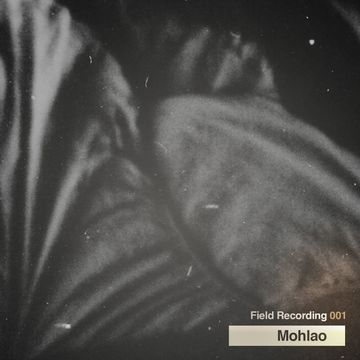 2010-04 - Mohlao - Field Recording 001.jpg
