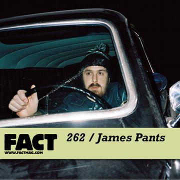 2011-07-02 - James Pants - FACT Mix 262.jpg