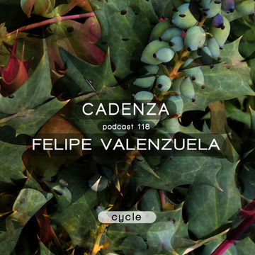 2014-05-28 - Felipe Valenzuela - Cadenza Podcast 118 - Cycle.jpg