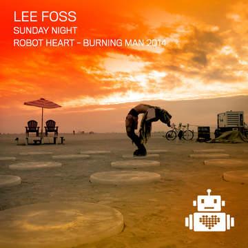 2014-09-01 - Robot Heart, Burning Man.jpg