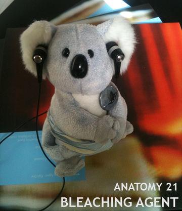 2012-12-02 - Bleaching Agent - anatomy 21.jpg