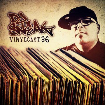 2016-07-06 - DJ Sneak - Vinylcast.jpg