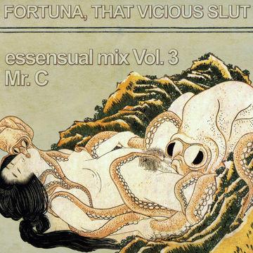 2010-05-11 - Mr. C - Essensual Mix Vol.3.jpg