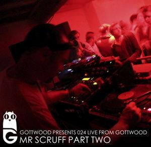 2011-09-06 - Mr. Scruff - Gottwood 024.jpg