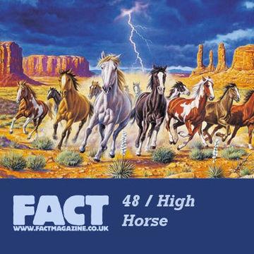 2009-05-13 - High Horse - FACT Mix 48.jpg