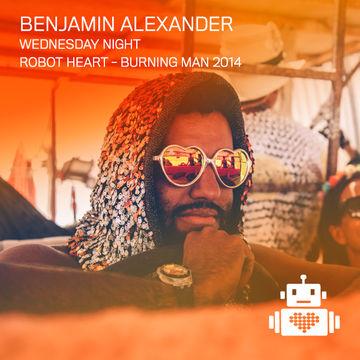 2014-08-26 - Benjamin Alexander @ Robot Heart, Burning Man.jpg