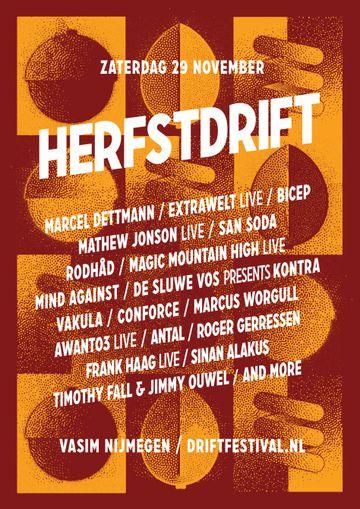 2014-11-29 - Herfstdrift, De Vasim.jpg