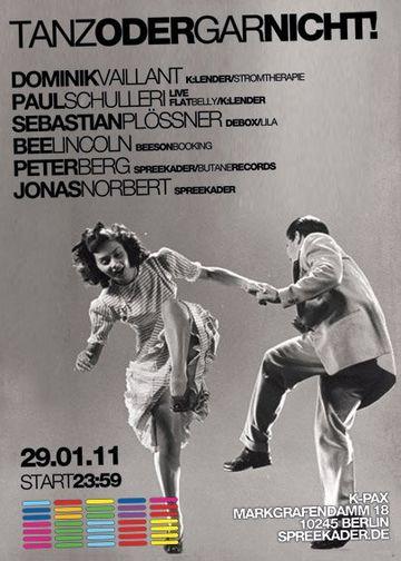 2011-01-29 - Tanz Oder Gar Nicht!, Spreekader.jpg