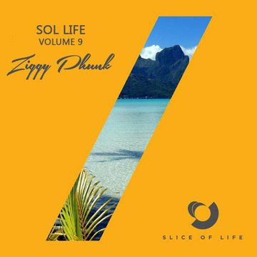 2014-08-15 - Ziggy Phunk - Sol Life Vol. 9.jpg