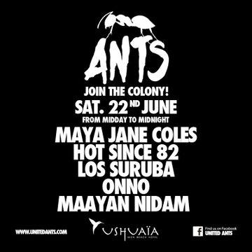 2013-06-22 - ANTS - Join The Colony!, Ushuaia.jpg
