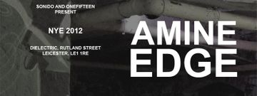 2012-12-31 - Sonido & Onefifteen Present Amine Edge - NYE, Dielectric -1.jpg