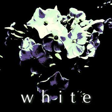 2008-08-27 - Alex Meshkov - Cotton Studio - White.jpg