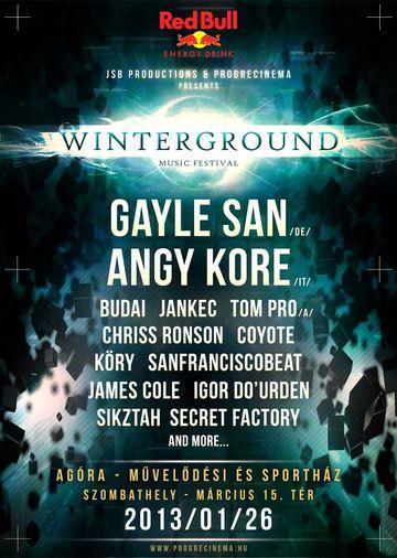 2013-01-26 - Winterground Festival.jpg