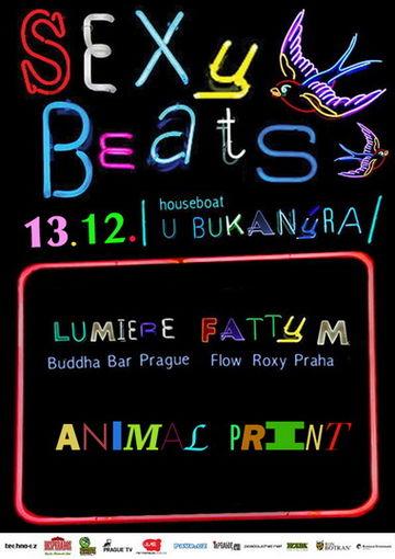 2014-12-13 - Fatty M @ Sexy Beats, U bukanýra, Praha.jpg