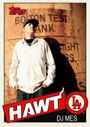 2013-08-14 - DJ Mes - Hawtcast 202.jpg