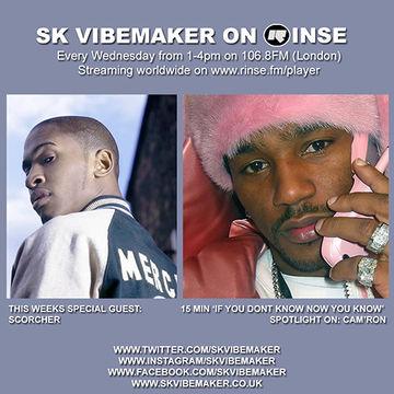 2014-11-19 - SK Vibemaker - Rinse FM.jpg