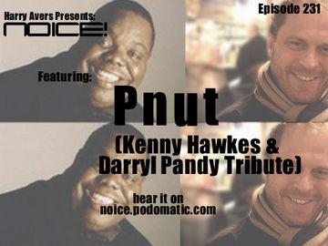 2011-06-28 - Pnut - Darryl Pandy & Kenny Hawkes Tribute Mix (Noice! Podcast 231).jpg