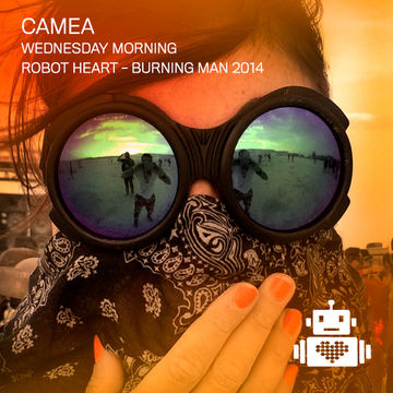 2014-08-25 - Robot Heart, Burning Man -4.jpg