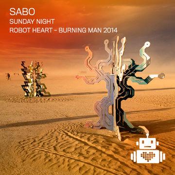 2014-08-31 - Robot Heart, Burning Man.jpg