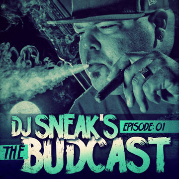 2012-11-29 - DJ Sneak - The Budcast 01.jpg