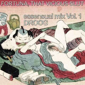 2010-03-11 - Droog - Essensual Mix Vol.1.jpg