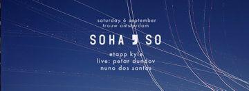 2014-09-06 - SoHaSo, Trouw.jpg