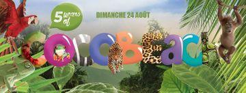 2014-08-24 - Cocobeach - Water Jungle.jpg