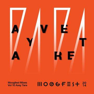 2014-03 - Avey Tare's Slasher Flicks - Moogfest Mixes Volume 10.jpg