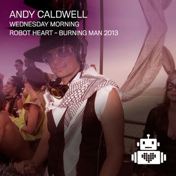 2013-08-27 - Andy Caldwell @ Robot Heart, Burning Man.jpg