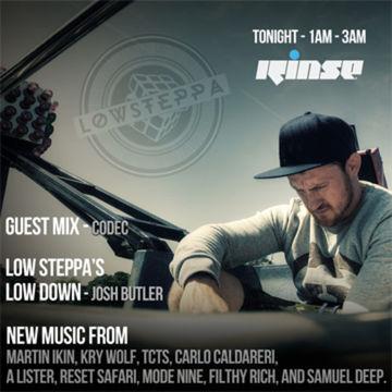 2014-07-18 - Low Steppa - Rinse FM.jpg