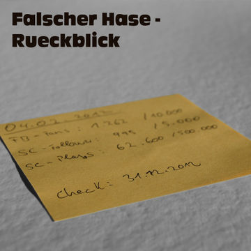 2012-12-30 - Falscher Hase - Rückblick (December Promo Mix).jpg