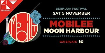 2011-11-05 - Mobilee Meets Moon Harbour, Watergate, BerMuDa.jpg