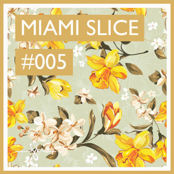 2014-06-19 - Miami Slice - Finest Hour Mixtape 005.jpg