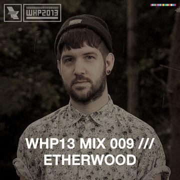 2013-10-28 - Etherwood - WHP13 Mix 009.jpg
