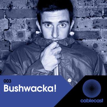 2012-12-22 - Bushwacka! - Cablecast 003.jpg