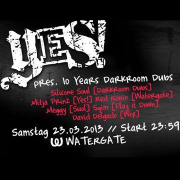 2013-03-23 - Yes! Presents 10 Years Darkroom Dubs, Watergate -2.jpg