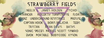 2012-11-2X - Strawberry Fields - 2.jpg