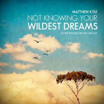2011-09-08 - Matthew Kyle - Not Knowing Your Wildest Dreams (In The Woods Promo Mix 001).jpg