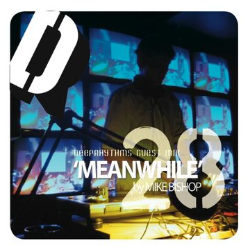 2009-03-08 - Mike Bishop - Meanwhile - Deeprhythms Guest Mix 28.jpg