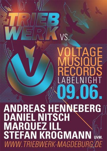 2012-06-09 - Voltage Musique Labelnight, Triebwerk.jpg